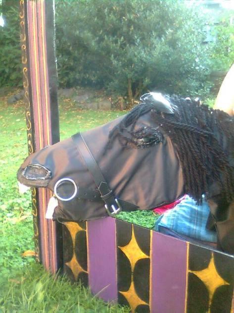 Calvary Horse